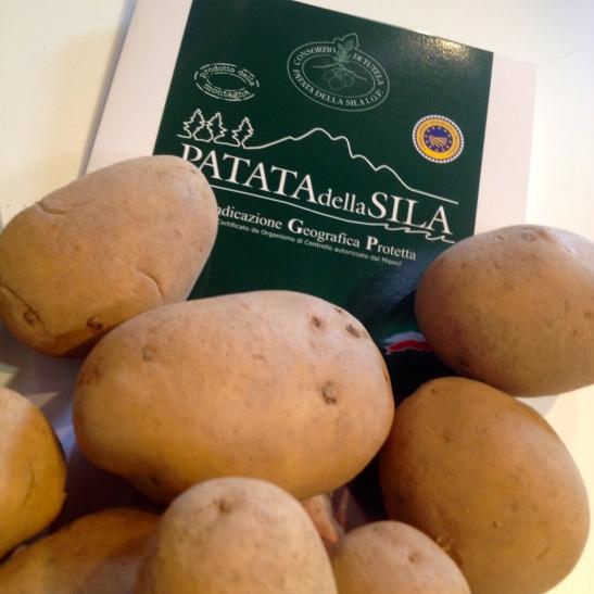patata sila 2